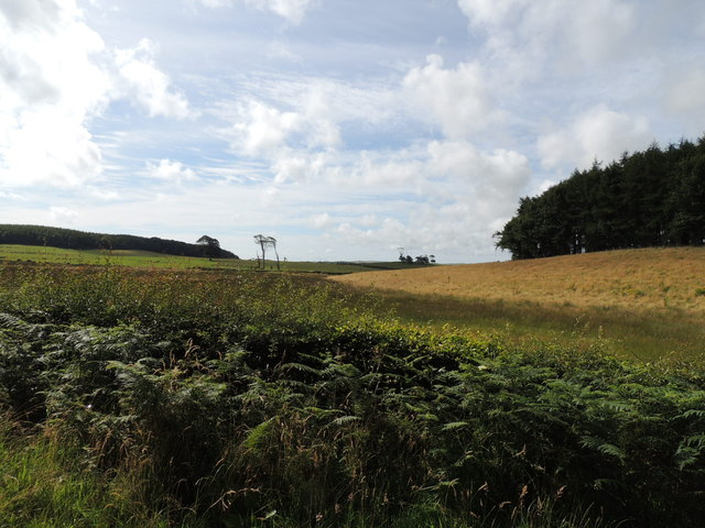 Farmland near Barrack Hill Wood