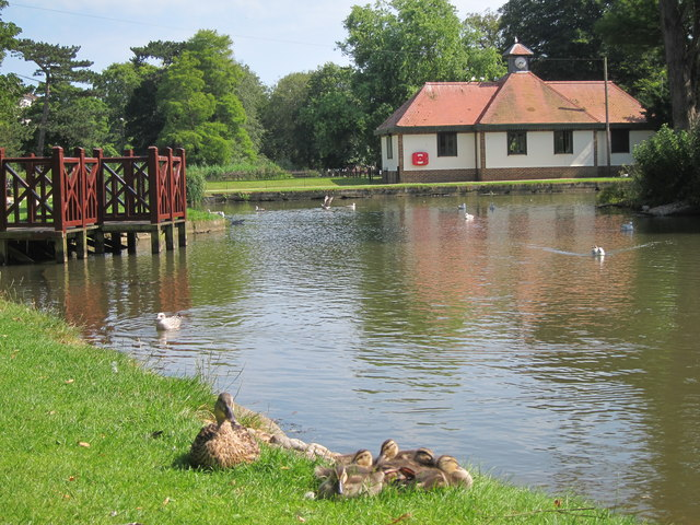 Pond at Alexandra Park