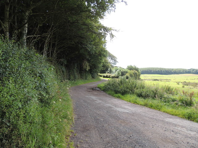 Road to Culhorn Mains