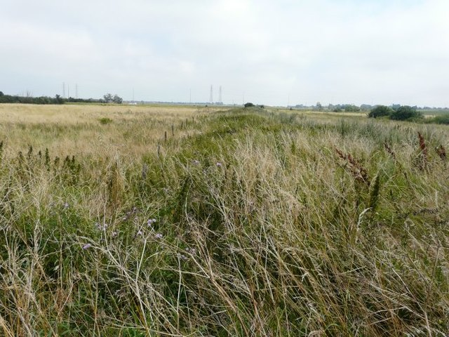 Former trackbed of Sheppey Light Railway