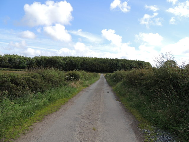 Southern Upland Way near Culhorn Mains