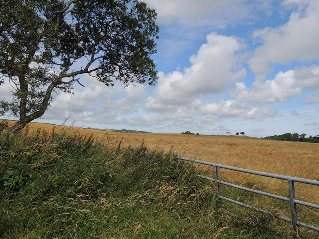 Farmland near Culreoch