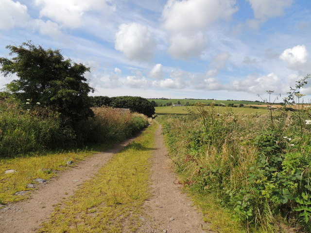 Southern Upland Way near Whiteleys