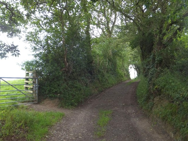 Lane and footpath to Westwood Farm