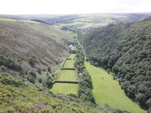 East Lyn Valley, west of Malmsmead