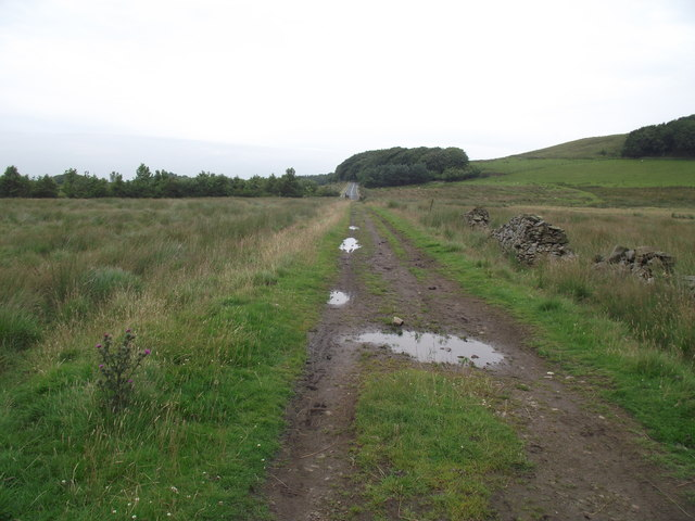 Bridleway on Longworth Moor