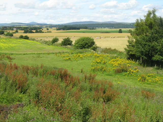 Farmland at Dunkenny