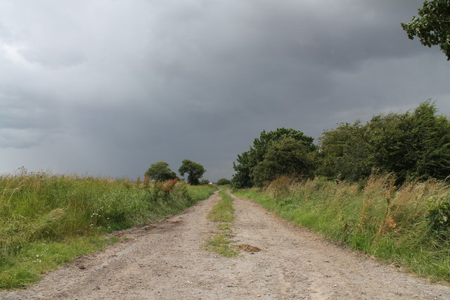 Track to Black House Farm, off Hides Lane