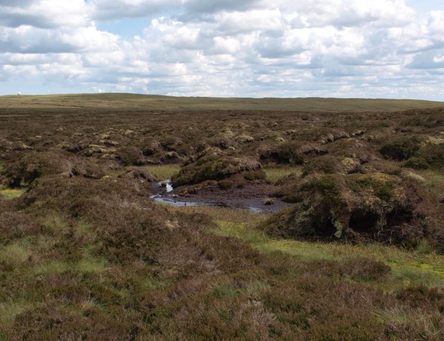 Campsie peat hags and bogs