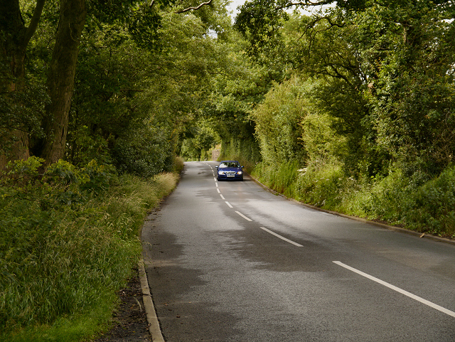 Broken Stone Road