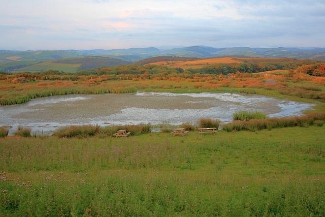 Pond near Bryncarnedd