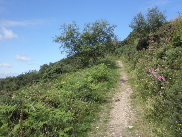 Footpath, near Ashton Cleave