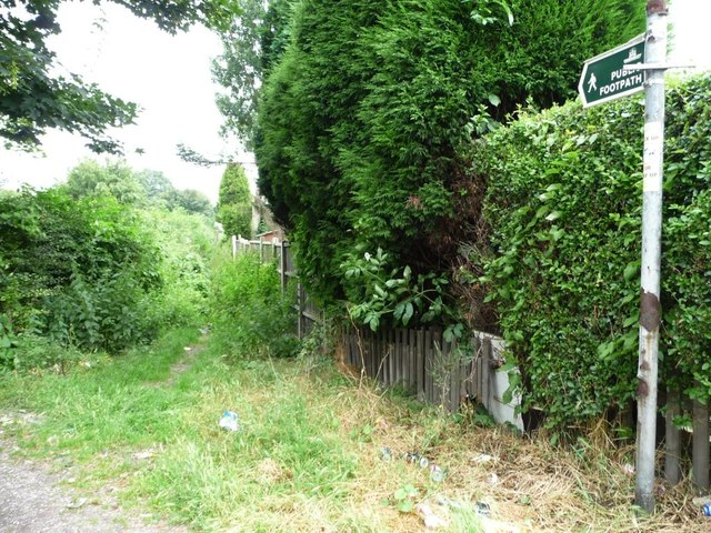 Rather overgrown public footpath, Brierley