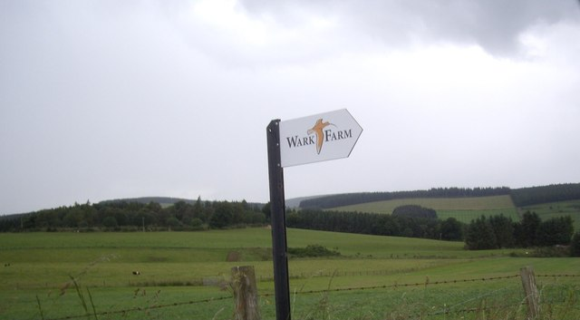 A new farm-name sign with Curlew (2012)
