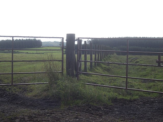 Field boundary fence near Dunsdykes
