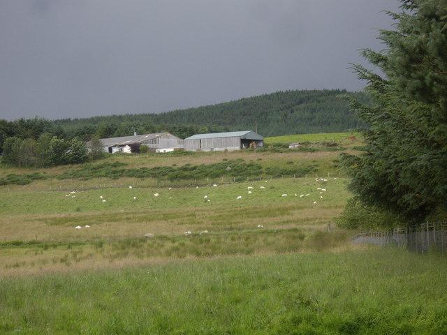 Blackhills farm