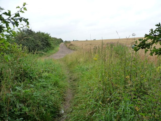 Footpath joining Lowfield Road