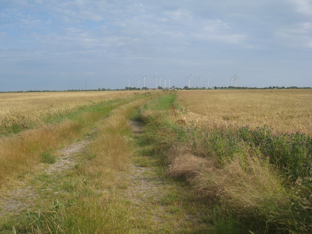 Farm track and windfarm