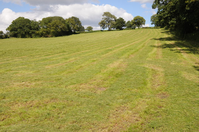 Haymaking on Carpenter's Hill