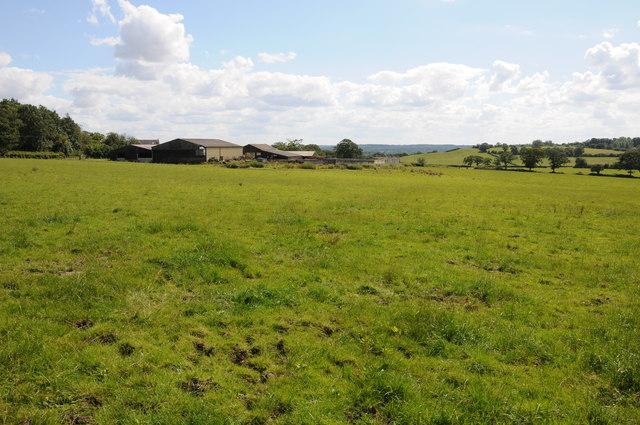 Carpenter's Hill Farm