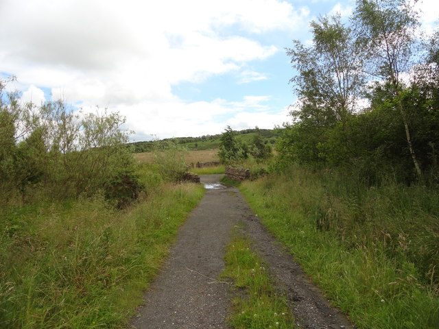 Path over Chapman's Well Nature Reserve