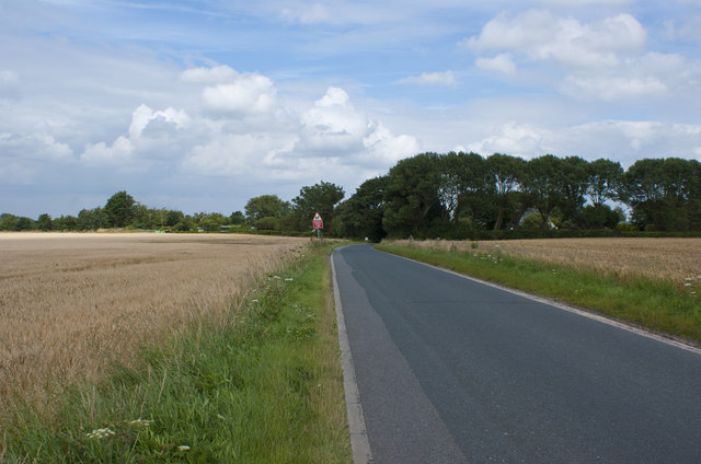 Approaching bends on Blindman's Lane