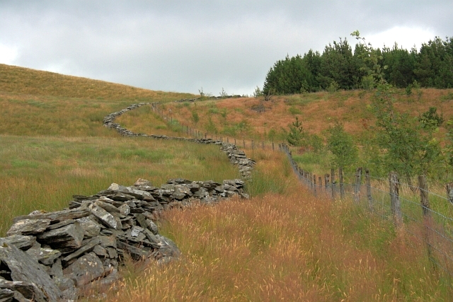 Ruined Wall, Pen-y-bwlch