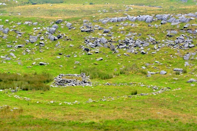 Ruined Sheepfold, Bryn Hir