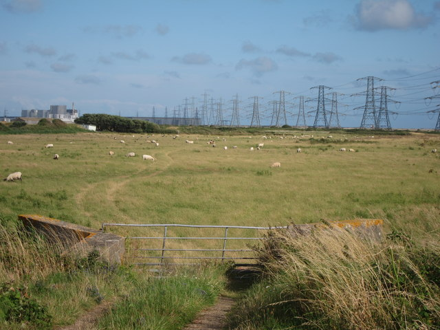 Field by Galloways Road