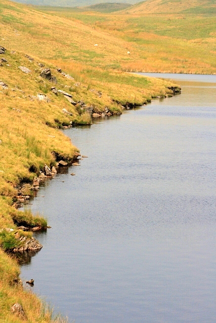 Shoreline, Llyn Egnant Reservoir
