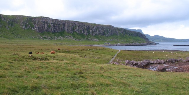 Pastureland near Staffin slipway