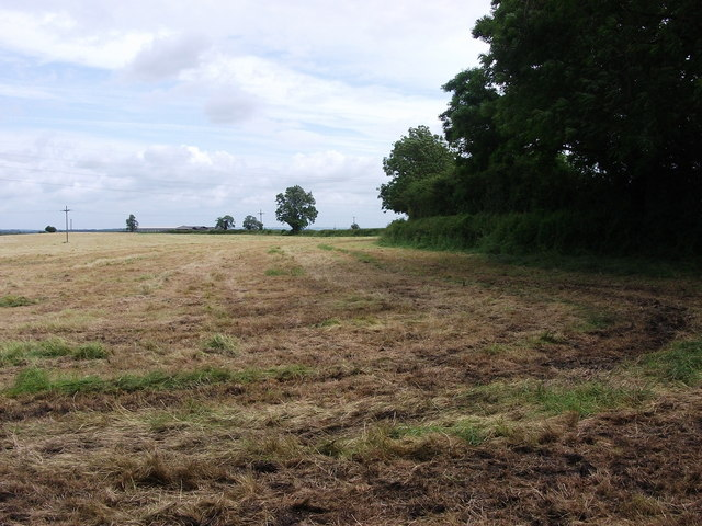 Newly mown field near Ufton Hill