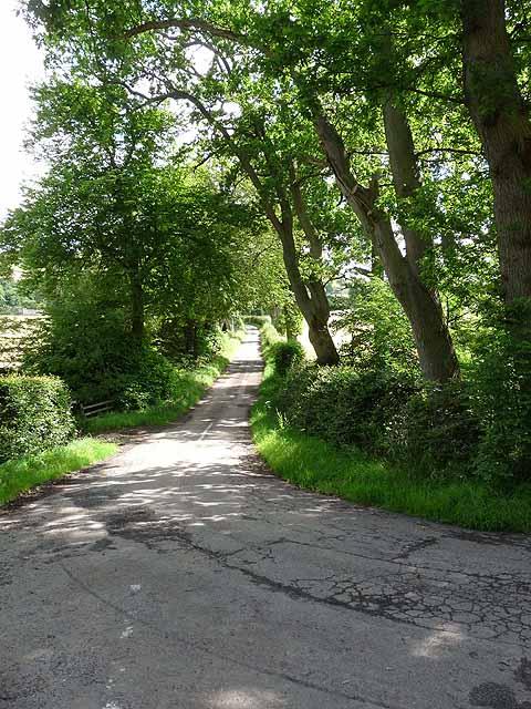 Driveway to Samieston Farm