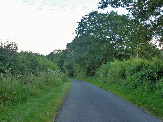 Lane towards Henley