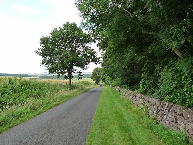 Country road alongside the grounds of Otterburn