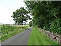 NT7524 : Country road alongside the grounds of Otterburn by Oliver Dixon