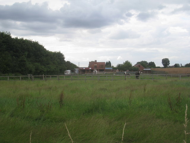 Paddocks by the A60