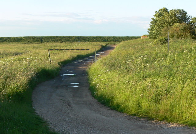 Track to the car park