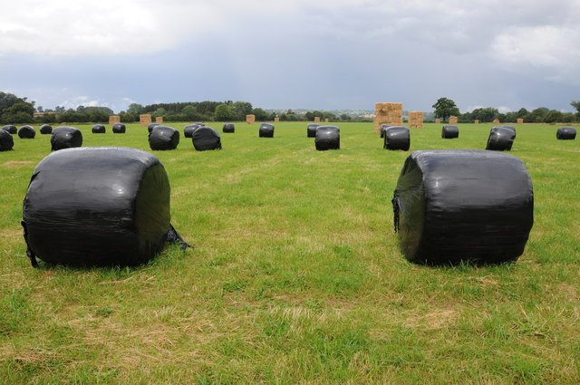 Silage and hay bales
