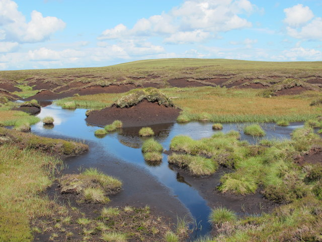 Small lough and peat haggs west of Killhope Law (2)
