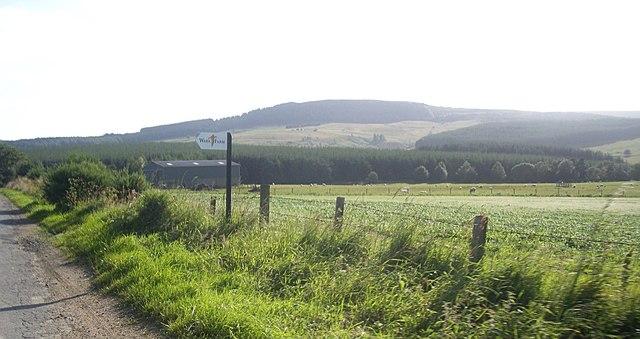 Signpost for Wark Farm