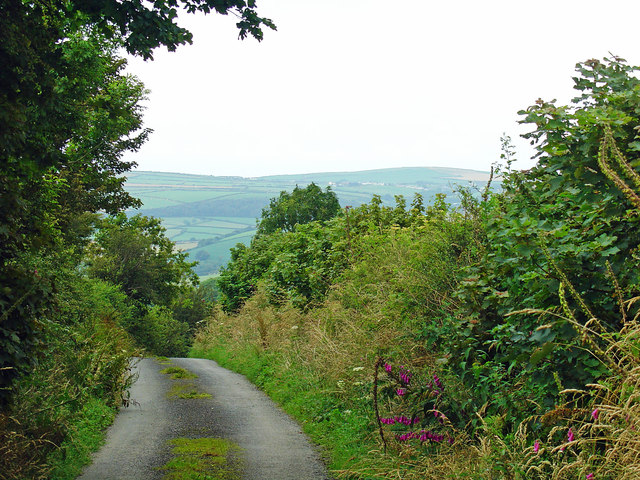Lane near Plas-y-waun