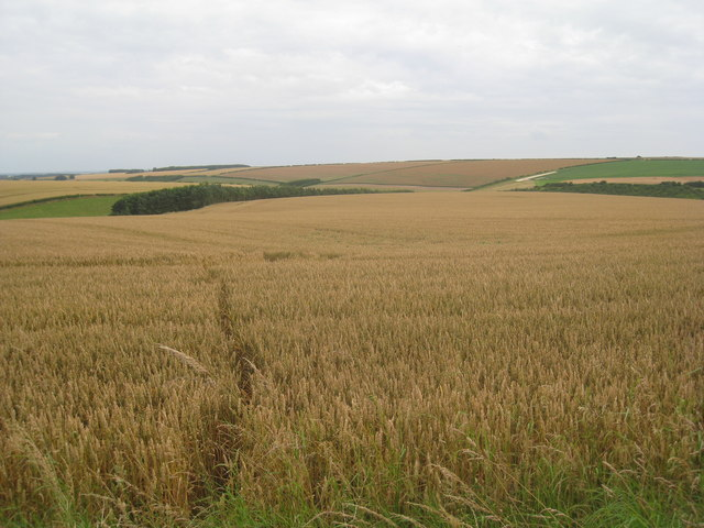 View towards Garton Bottom
