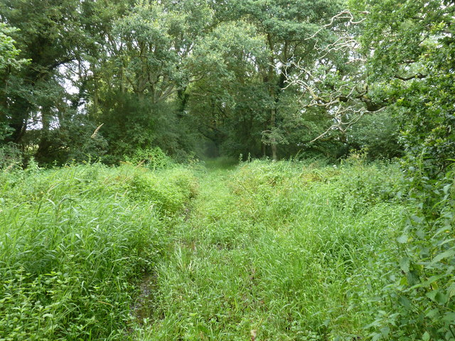 Bridleway to Caldicott's Wood
