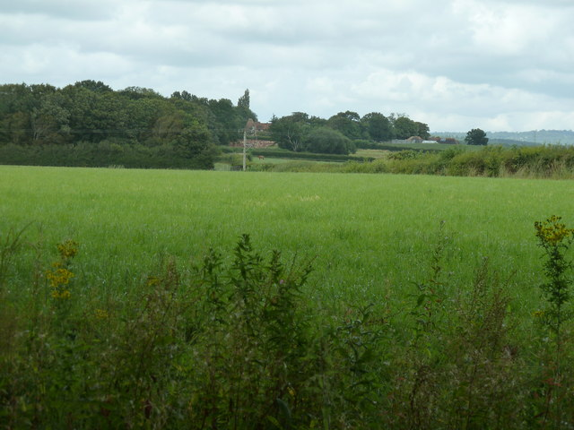 Long distance view to Pekes Oast House at Pekes farm