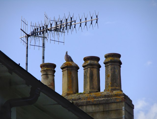 Henley rooftop: ancient and modern