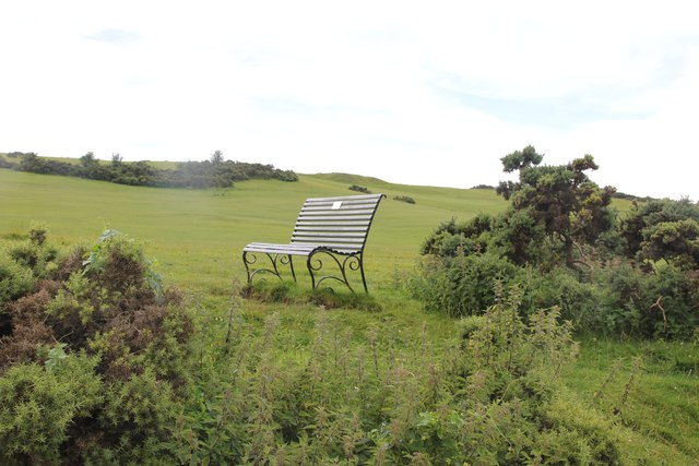 Bench on Cleeve Hill by the golf course
