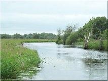 N0778 : The Camlin River, near Termonbarry / Tarmonbarry, Co. Longford by JP