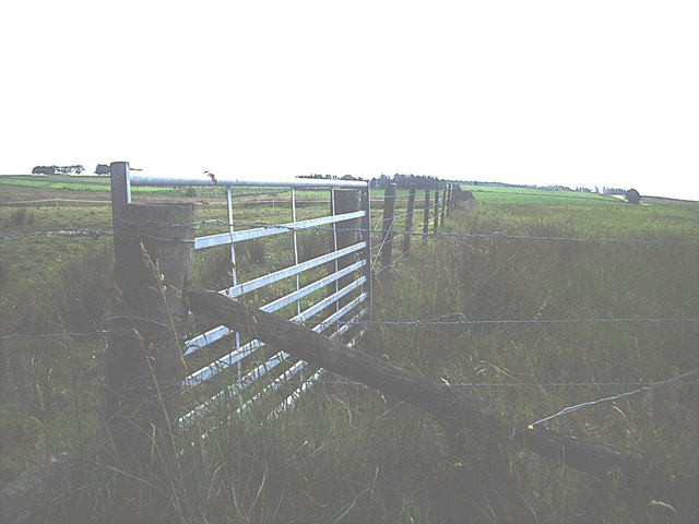 Field gate and boundary fence