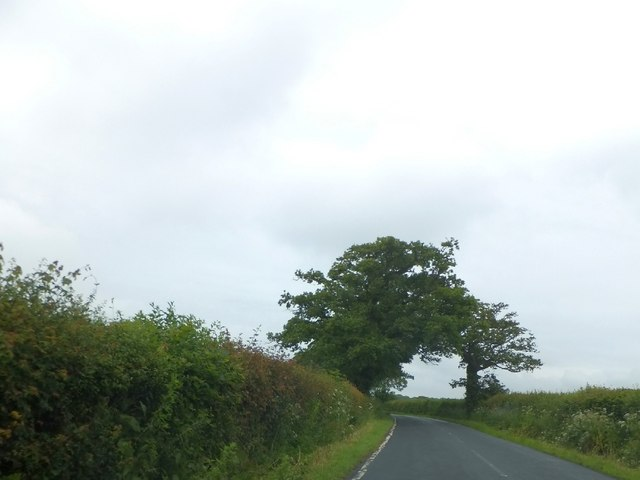 The road to London Farm via Whiteoaks